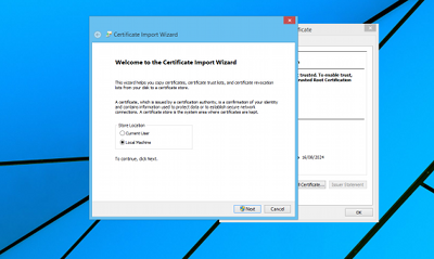 Certificate install IE 2
